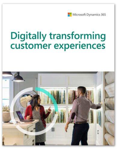 customer insights 1-shadow