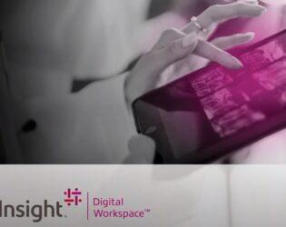 insight full video screenshot-wide